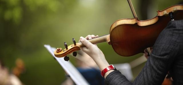 violino per matrimonio a lecce
